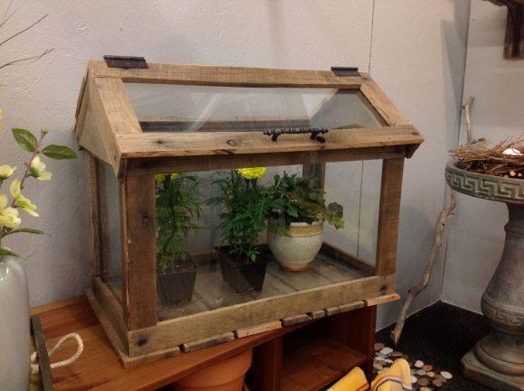 Террариум из старого аквариума