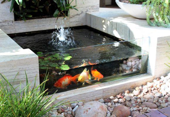 Уличный аквариум