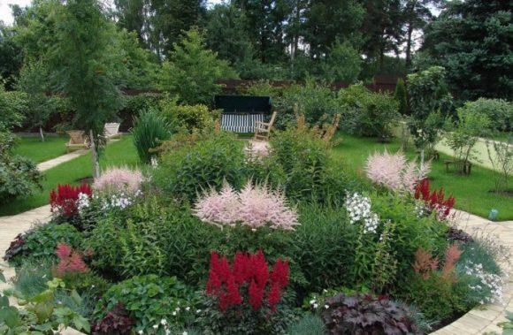 Садовая скамейка у клумбы из астильбы и хвойников