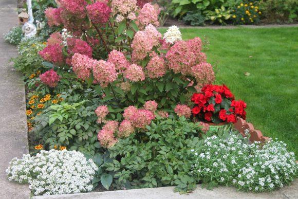 Эффектная цветочная композиция с гортензией