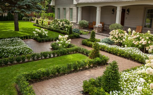 Хвойные бордюры у садовых дорожек