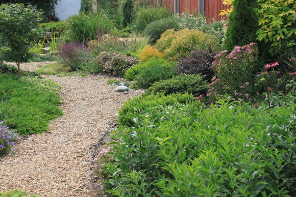 Зелёный бордюр в саду пейзажного дизайна