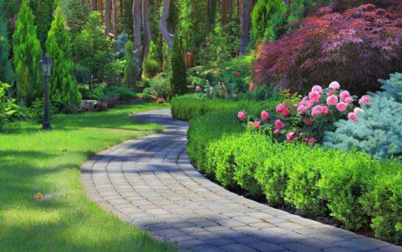 Эффектный хвойно-цветочный бордюр в саду природного дизайна