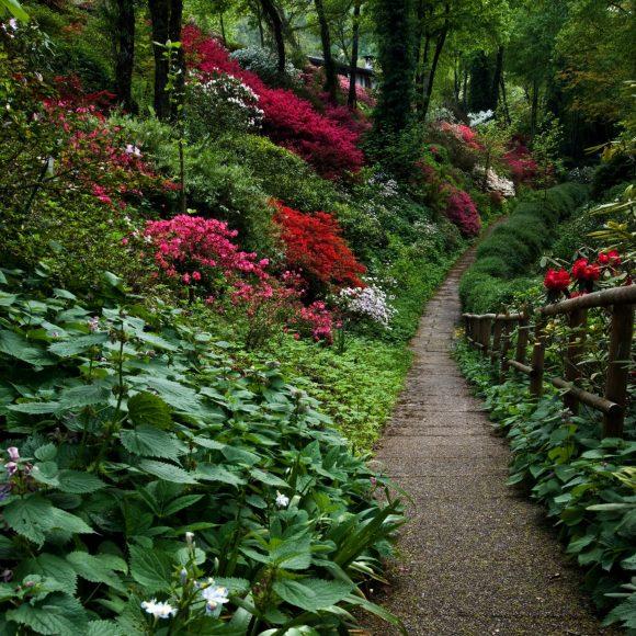Эффектный склон-бордюр дорожки в саду пейзажного дизайна