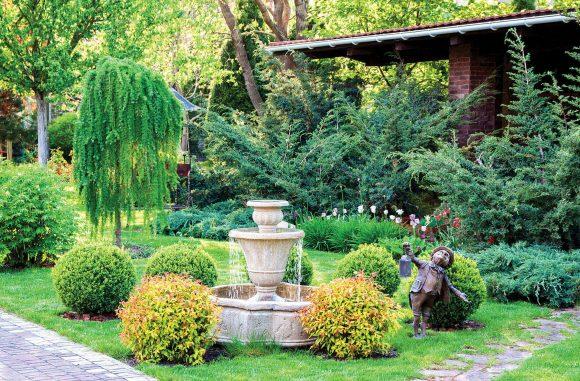 Ива в саду природного дизайна