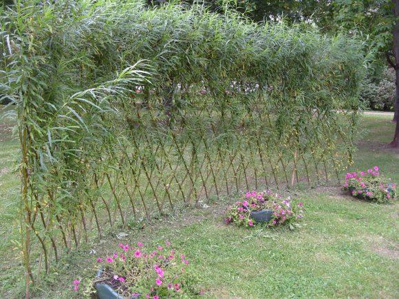 Зонирование дачного участка ивовым забором
