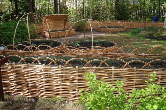 Бордюры для грядок из ивовых прутьев на садовом участке