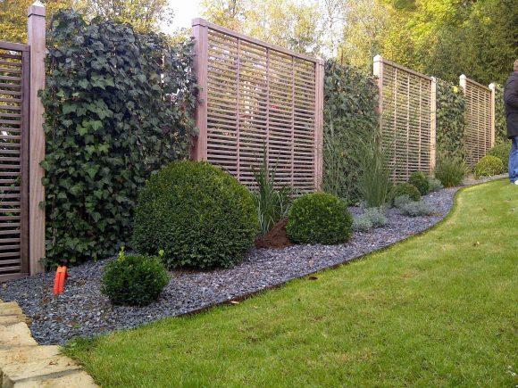 Ползучие растения за ограде загородного дома