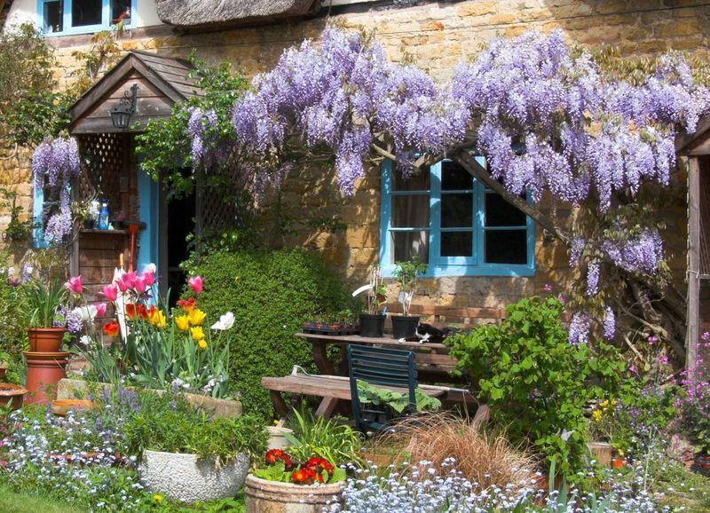 Вертикальное озеленение садовых участков: советы по креативному ландшафтному дизайну на даче