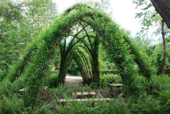 Садовая беседка из живой ивы