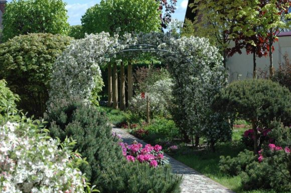 Цветочные арки над садовой дорожкой
