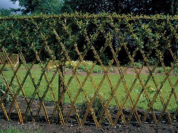 Плетёная изгородь из живой ивы