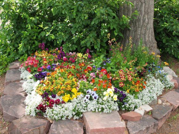 Приствольный цветник в саду пейзажного дизайна
