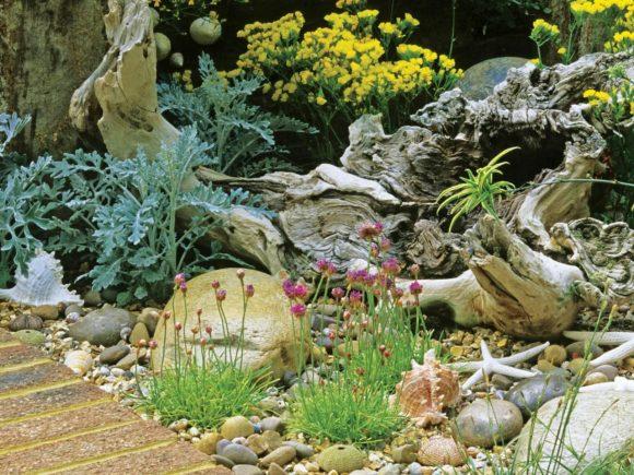 Живописная композиция из коряг, растений и камней