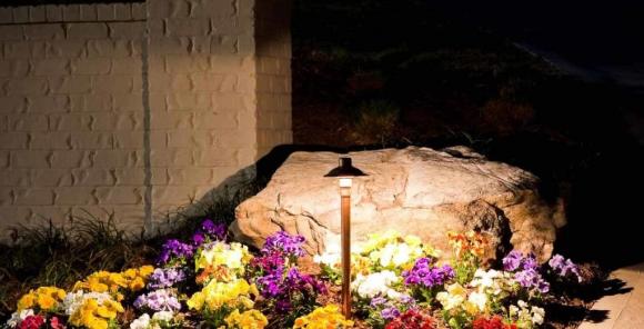 Яркая цветочная клумба с подсветкой