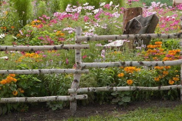 Забор из берёзы в стиле кантри