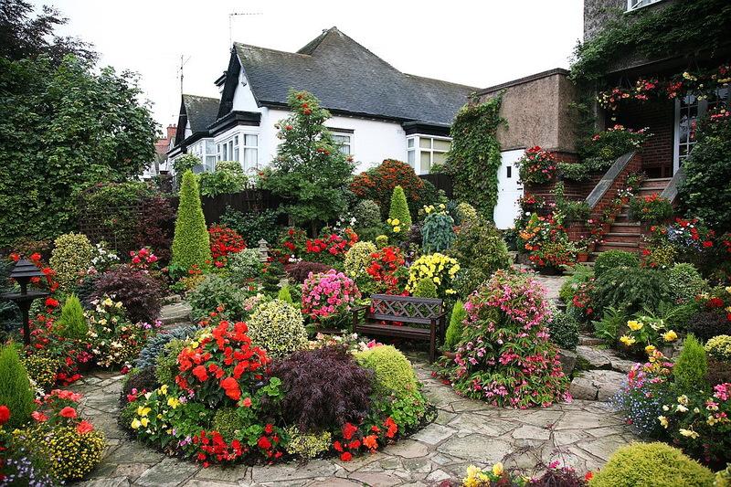 Хоста, можжевельник и другие растения в ландшафтном дизайне: статьи с идеями их использования