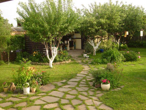 Фруктовый сад на участке деревенского стиля