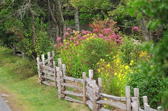 Клумба в саду деревенского дизайна