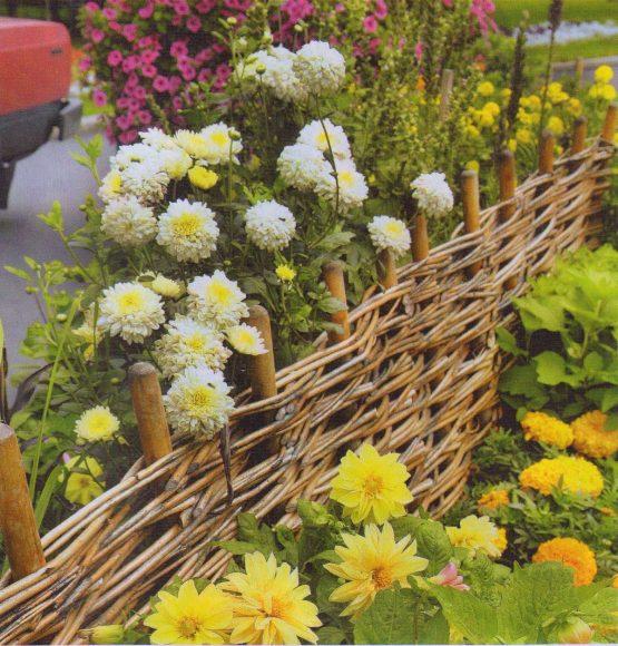 Красивые цветы на клумбе участка деревенского дизайна
