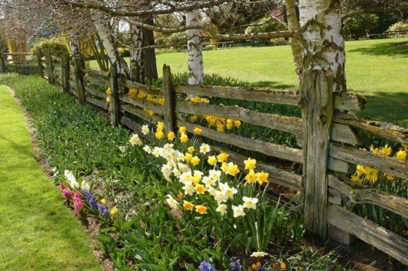 Деревенский дачный забор