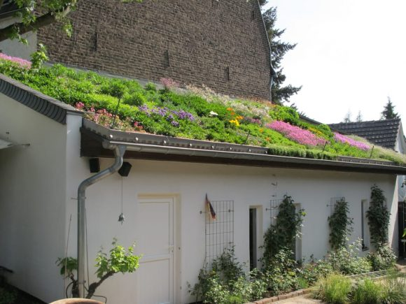 Цветник на крыше дачного дома