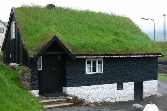 Газонная трава на крыше дачного дома
