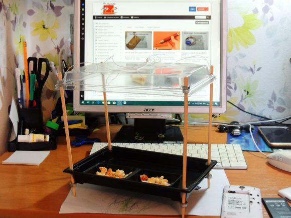 Кормушка для птиц из палочек и коробки для суши