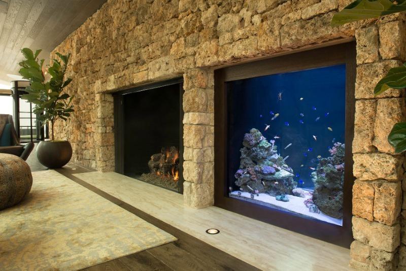 7 видов аквариумов, которые преобразят любой интерьер